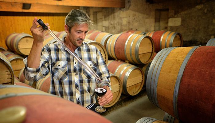 001-winemaker